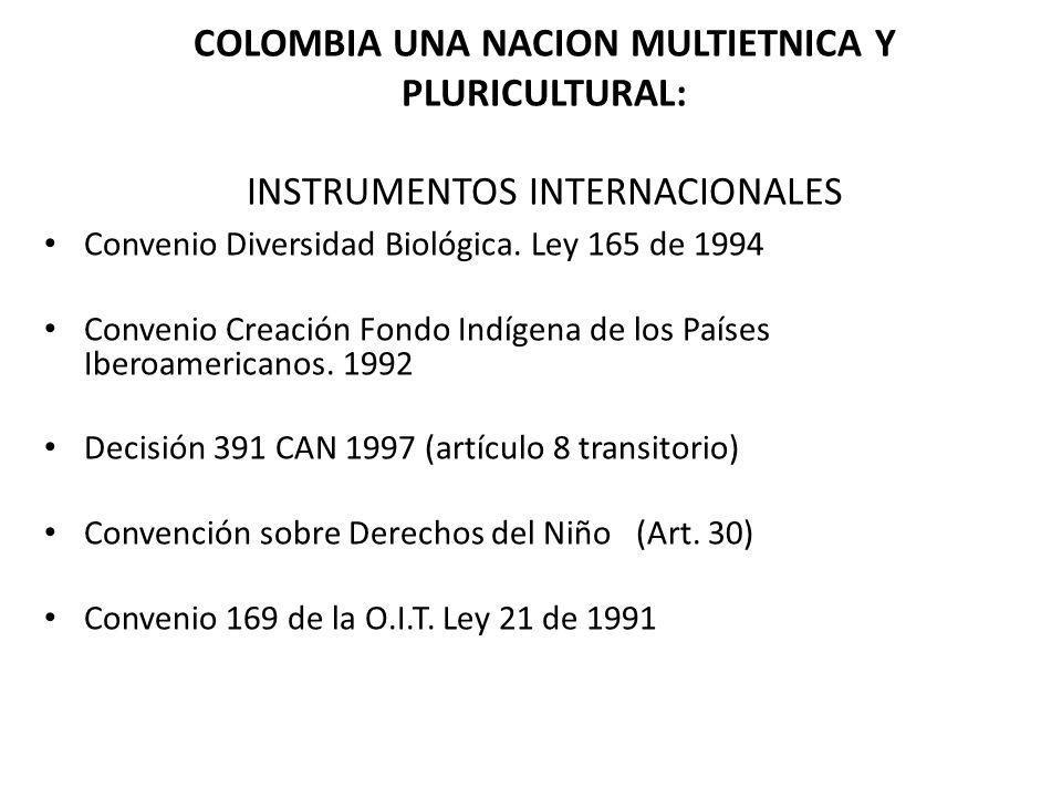 COLOMBIA UNA NACION MULTIETNICA Y PLURICULTURAL: INSTRUMENTOS INTERNACIONALES Convenio Diversidad Biológica. Ley 165 de 1994 Convenio Creación Fondo I