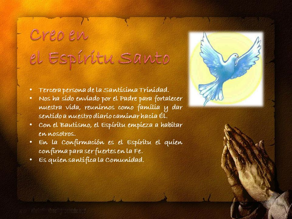 Oración: «Señor Jesús, en ti reconocemos el don de Dios a los Hombres.
