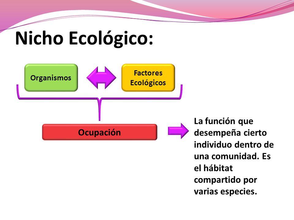Nicho Ecológico: Organismos Factores Ecológicos Ocupación La función que desempeña cierto individuo dentro de una comunidad.