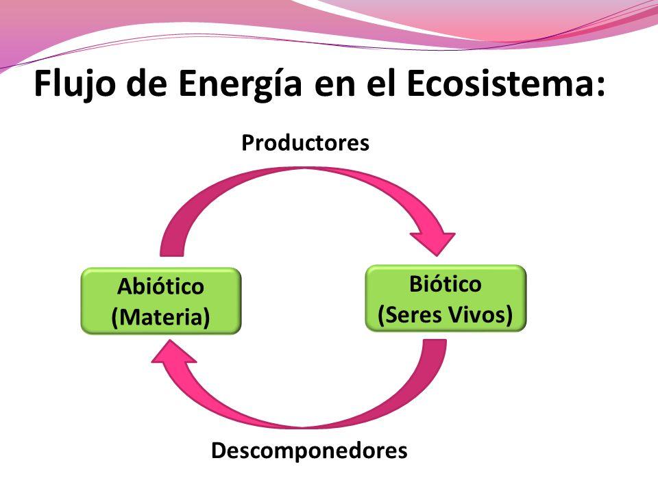Flujo de Energía en el Ecosistema: Abiótico (Materia) Biótico (Seres Vivos) Productores Descomponedores