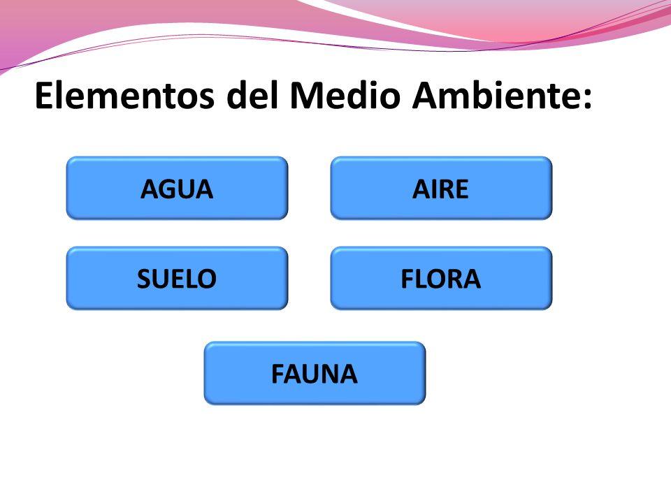 Elementos del Medio Ambiente: AGUA SUELO FAUNA FLORA AIRE