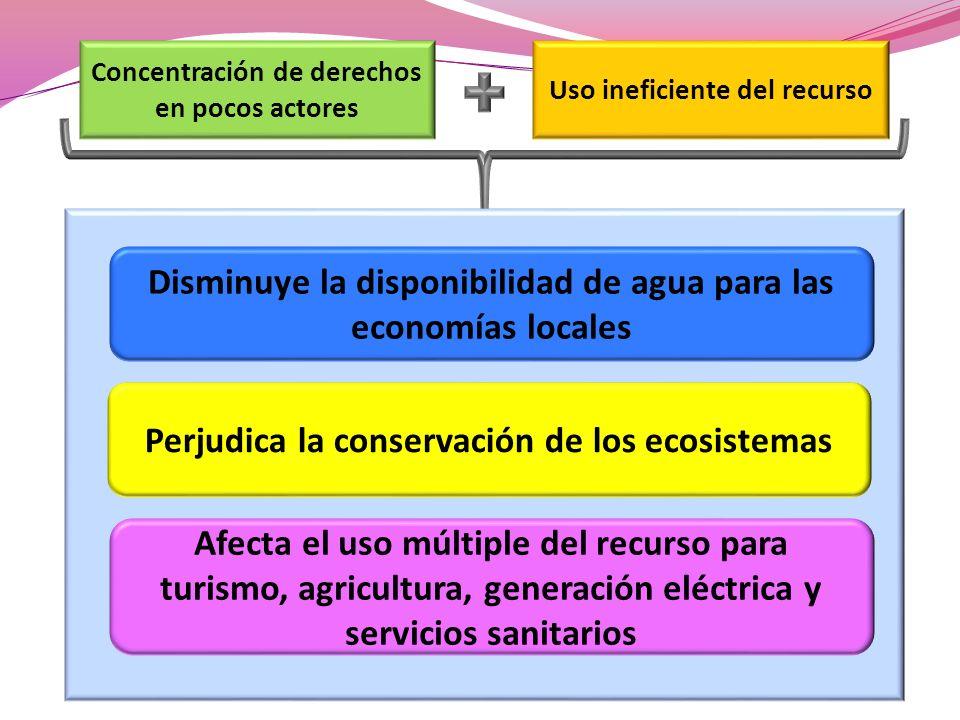 Concentración de derechos en pocos actores Uso ineficiente del recurso Disminuye la disponibilidad de agua para las economías locales Perjudica la conservación de los ecosistemas Afecta el uso múltiple del recurso para turismo, agricultura, generación eléctrica y servicios sanitarios