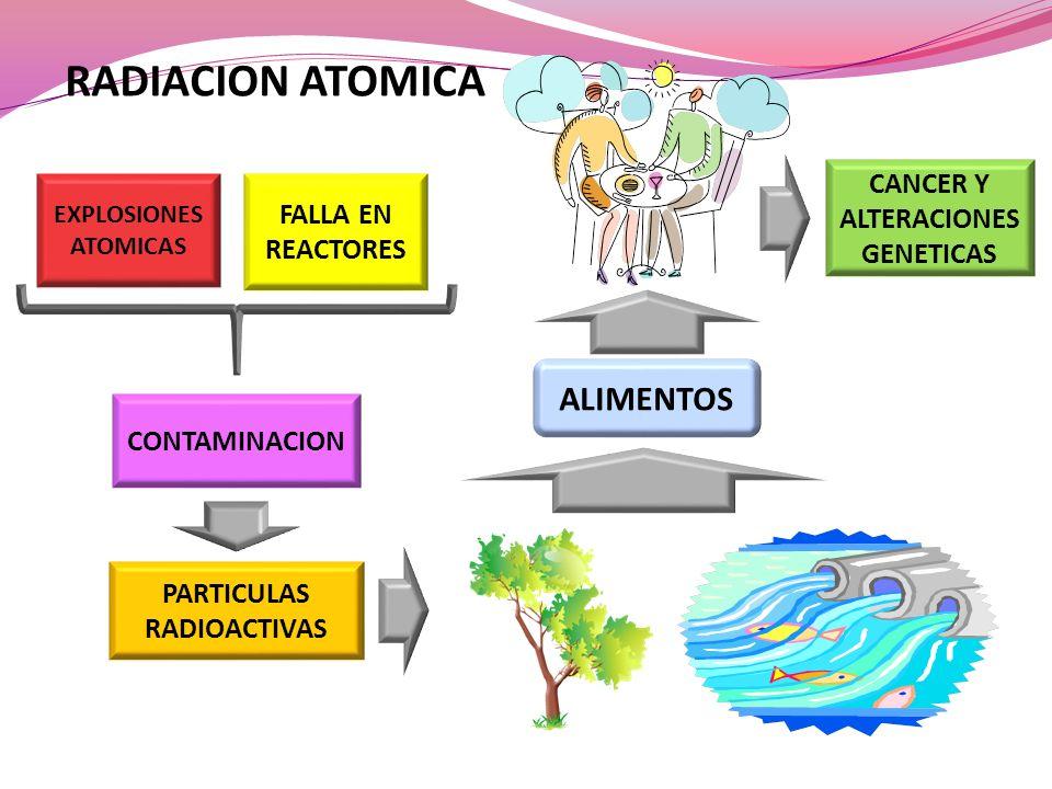 EXPLOSIONES ATOMICAS FALLA EN REACTORES CONTAMINACION ALIMENTOS CANCER Y ALTERACIONES GENETICAS PARTICULAS RADIOACTIVAS RADIACION ATOMICA