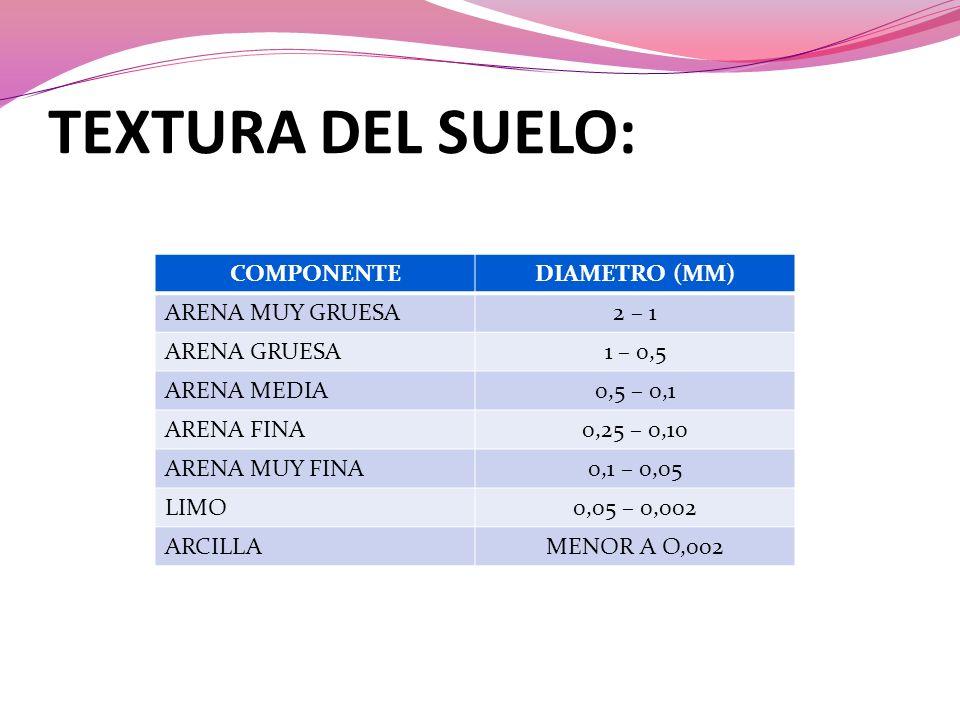 TEXTURA DEL SUELO: COMPONENTEDIAMETRO (MM) ARENA MUY GRUESA2 – 1 ARENA GRUESA1 – 0,5 ARENA MEDIA0,5 – 0,1 ARENA FINA0,25 – 0,10 ARENA MUY FINA0,1 – 0,05 LIMO0,05 – 0,002 ARCILLAMENOR A O,002