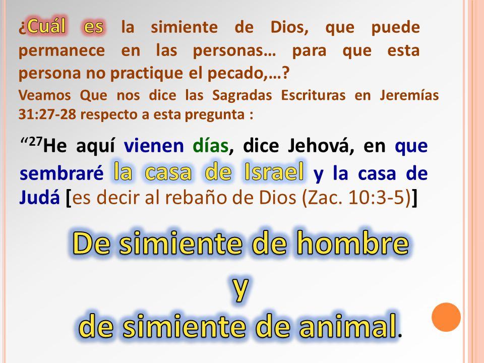 Veamos Que nos dice las Sagradas Escrituras en Jeremías 31:27-28 respecto a esta pregunta :