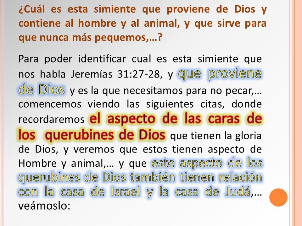 ¿Cuál es esta simiente que proviene de Dios y contiene al hombre y al animal, y que sirve para que nunca más pequemos,…?