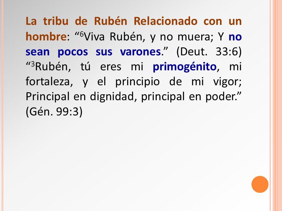 La tribu de Rubén Relacionado con un hombre: 6 Viva Rubén, y no muera; Y no sean pocos sus varones. (Deut. 33:6) 3 Rubén, tú eres mi primogénito, mi f