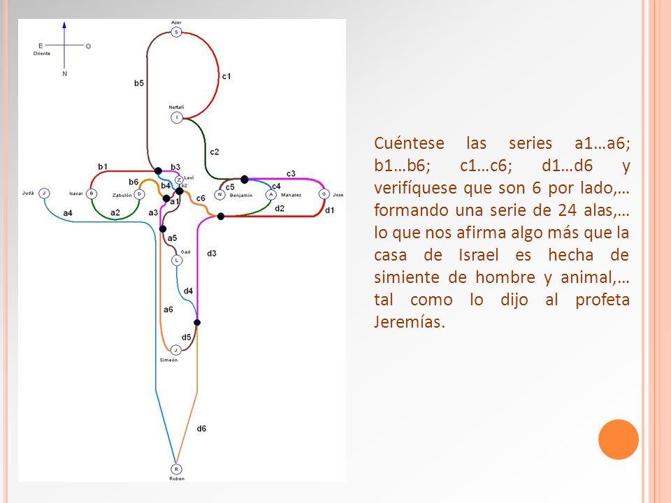 Cuéntese las series a1…a6; b1…b6; c1…c6; d1…d6 y verifíquese que son 6 por lado,… formando una serie de 24 alas,… lo que nos afirma algo más que la ca