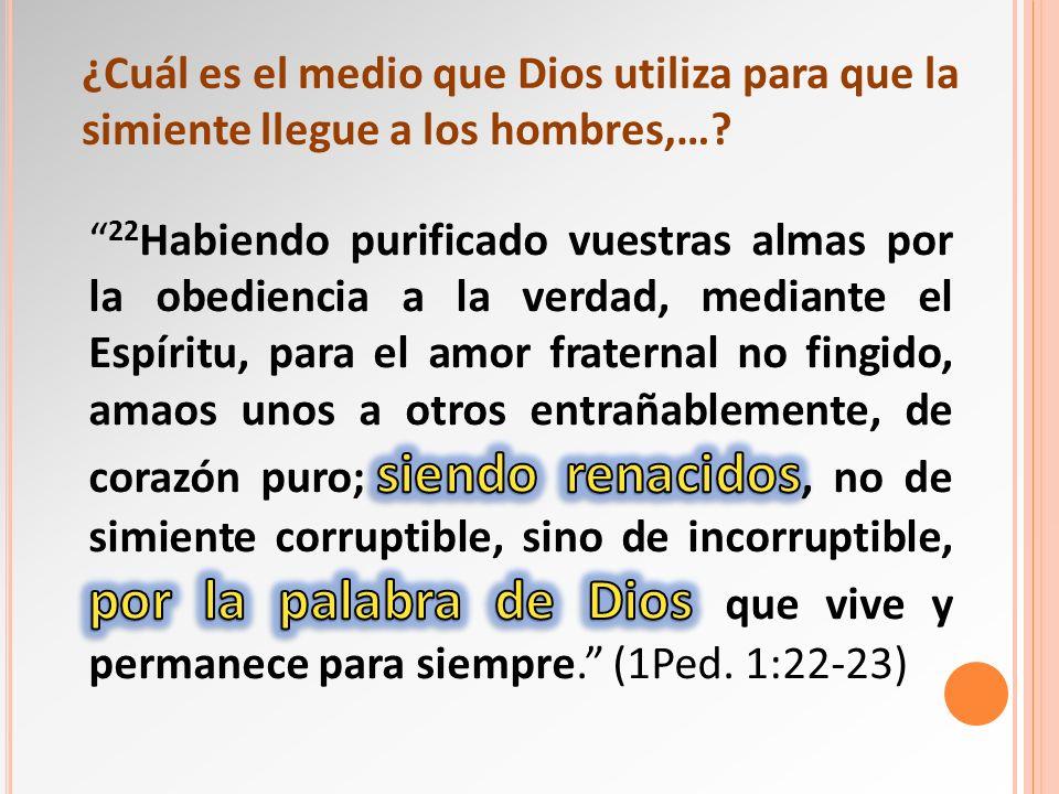 ¿Cuál es el medio que Dios utiliza para que la simiente llegue a los hombres,…?