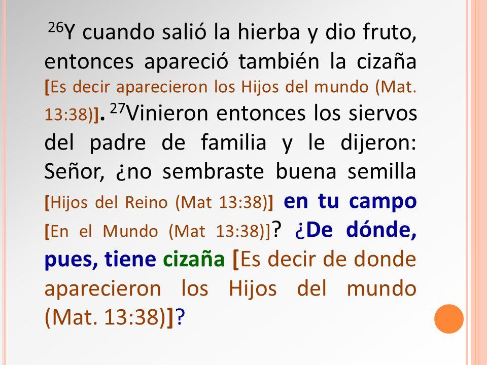 26 Y cuando salió la hierba y dio fruto, entonces apareció también la cizaña [Es decir aparecieron los Hijos del mundo (Mat. 13:38)]. 27 Vinieron ento