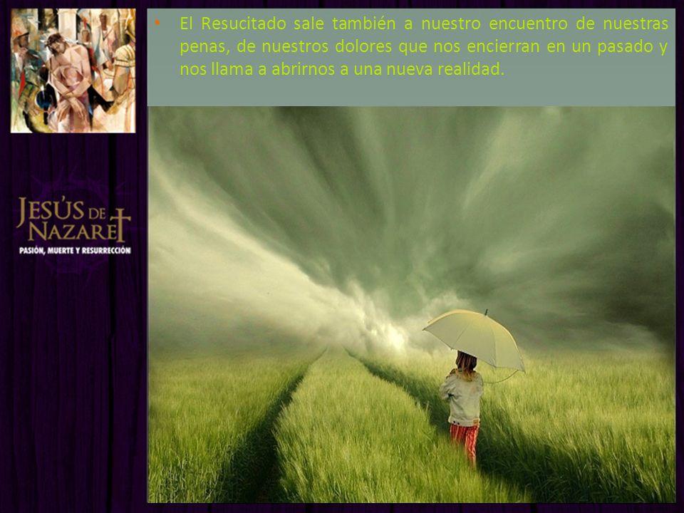 El Resucitado sale también a nuestro encuentro de nuestras penas, de nuestros dolores que nos encierran en un pasado y nos llama a abrirnos a una nuev