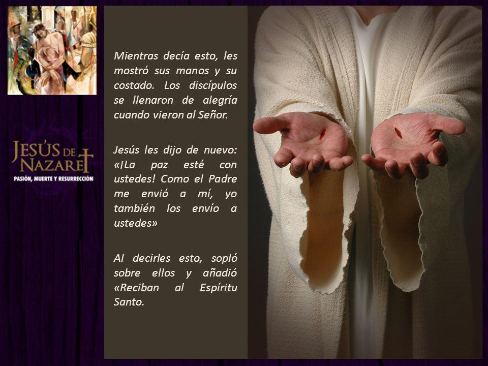 Mientras decía esto, les mostró sus manos y su costado. Los discípulos se llenaron de alegría cuando vieron al Señor. Jesús les dijo de nuevo: «¡La pa