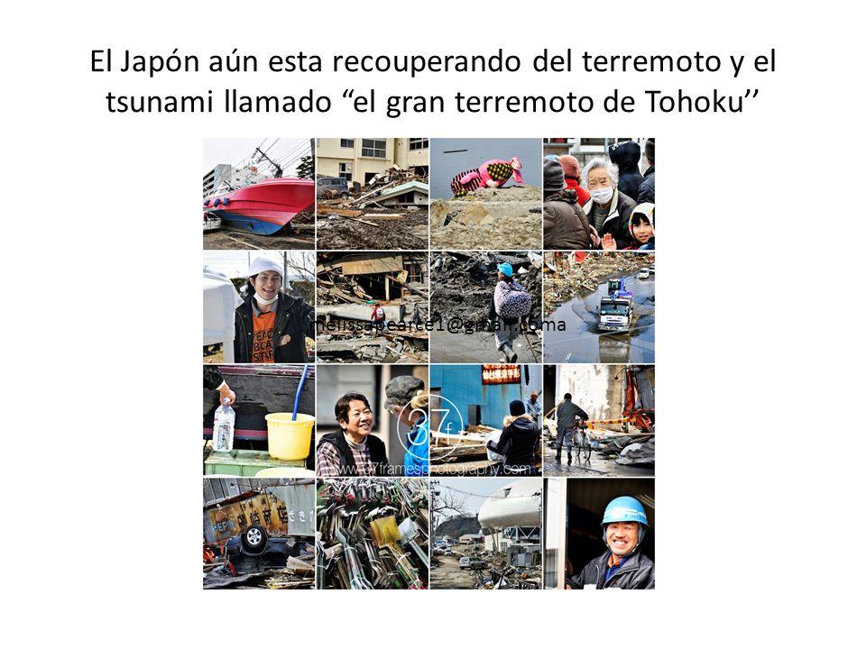 Japón tiene muchos terremotos. Unas veces los terremotos causan un tsunami (una ola gigantesca). En el 11 de marzo, 2011 pasó un gran terremoto y un t
