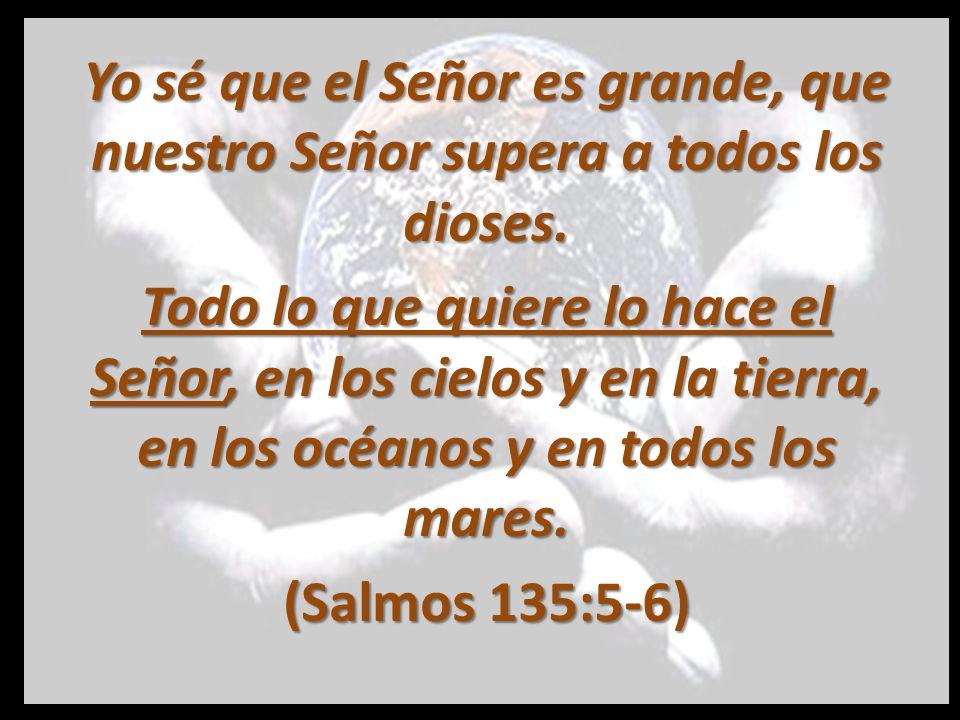 Vuelvan a ti, Señor y Dios nuestro la gloria, el honor y el poder, pues tú lo mereces.