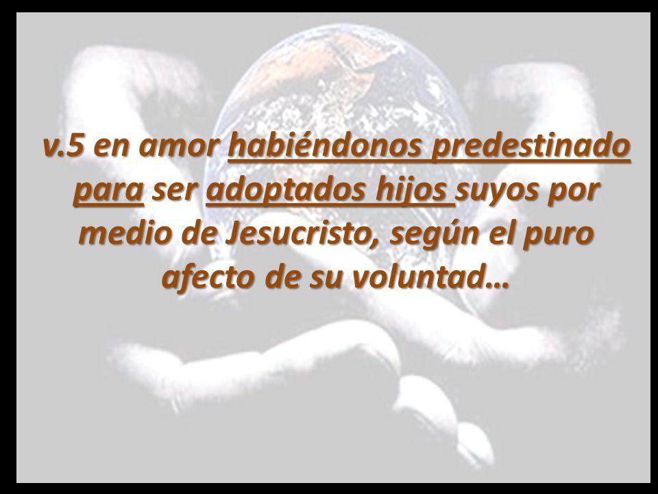 Este texto nos enseña Cuatro Cosas: 1.Dios escogió a su pueblo antes de la fundación del mundo.