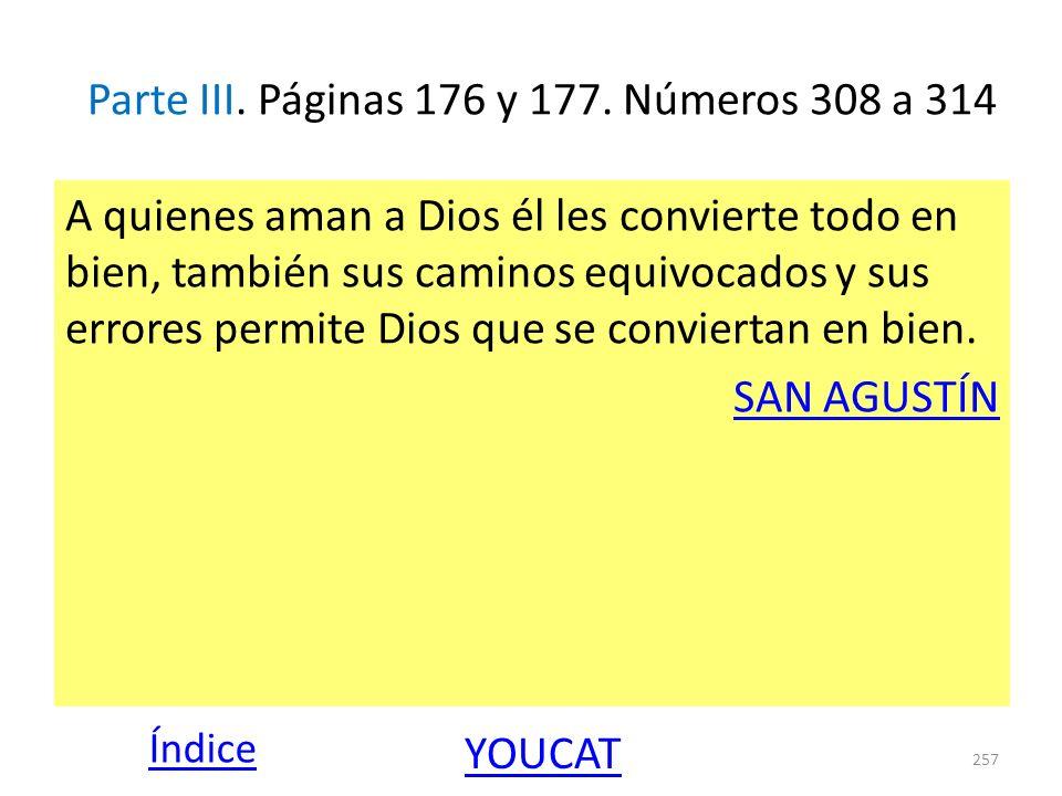 Parte III. Páginas 176 y 177. Números 308 a 314 A quienes aman a Dios él les convierte todo en bien, también sus caminos equivocados y sus errores per