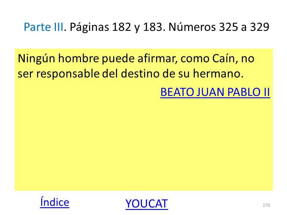 Parte III. Páginas 182 y 183. Números 325 a 329 Ningún hombre puede afirmar, como Caín, no ser responsable del destino de su hermano. BEATO JUAN PABLO