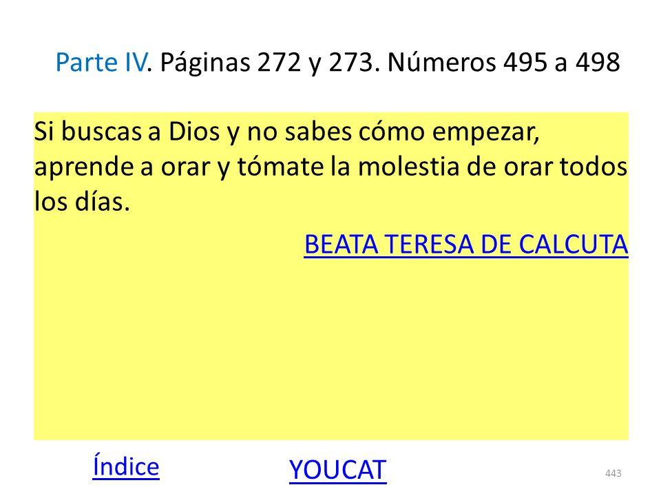 Parte IV. Páginas 272 y 273. Números 495 a 498 Si buscas a Dios y no sabes cómo empezar, aprende a orar y tómate la molestia de orar todos los días. B