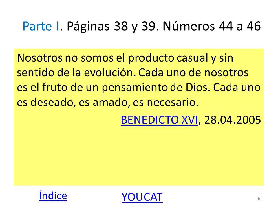 Parte I. Páginas 38 y 39. Números 44 a 46 Nosotros no somos el producto casual y sin sentido de la evolución. Cada uno de nosotros es el fruto de un p
