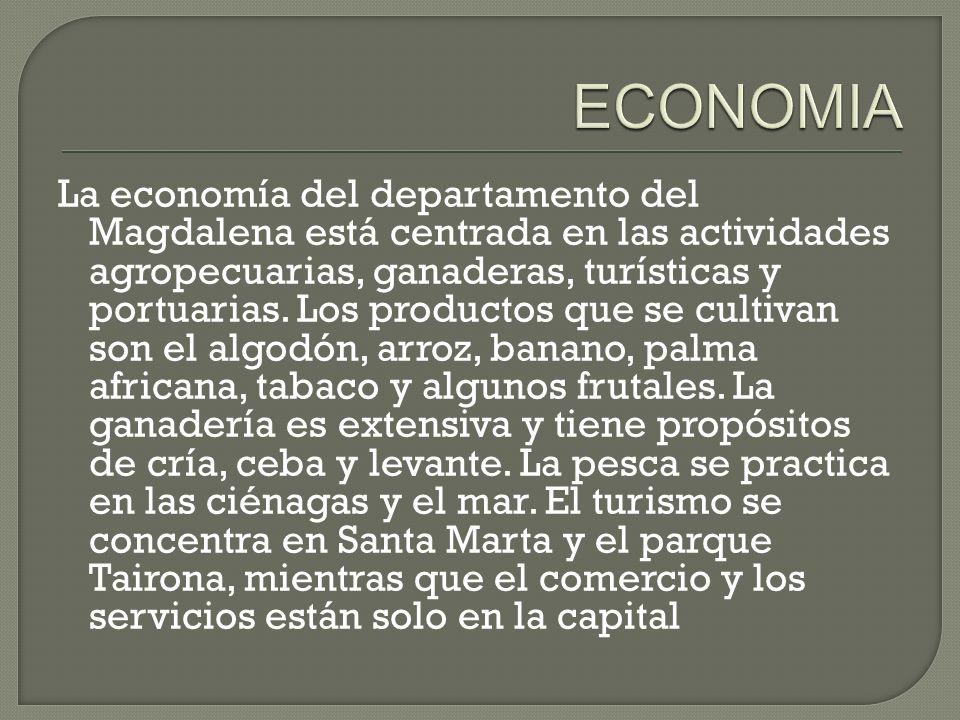 La economía del departamento del Magdalena está centrada en las actividades agropecuarias, ganaderas, turísticas y portuarias. Los productos que se cu