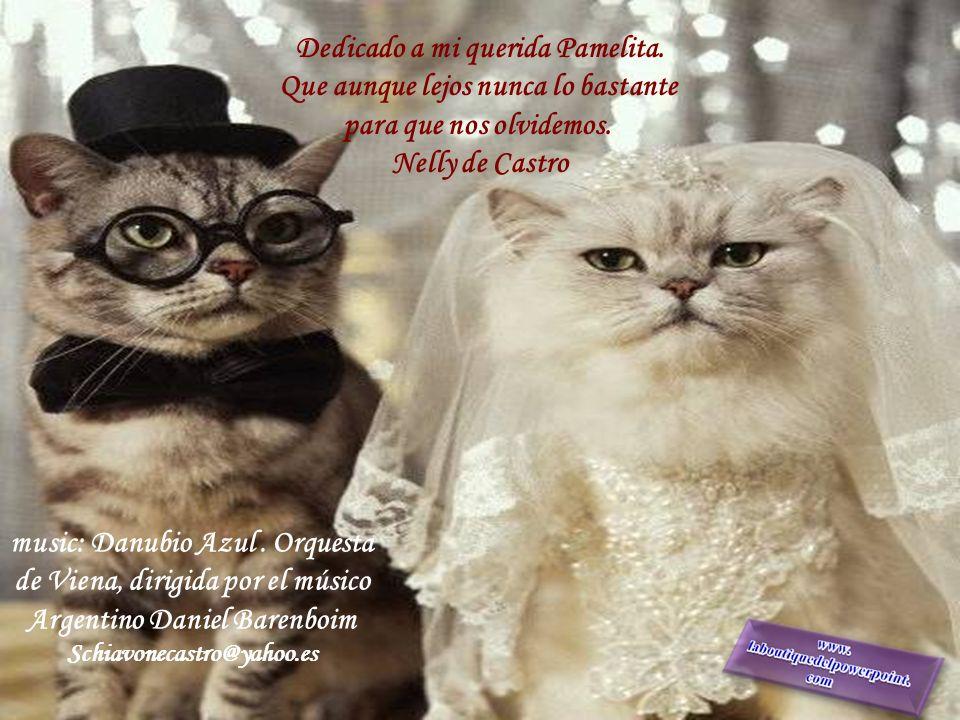 1.990 La falta de compromiso invadió las relaciones afectivas. El casamiento perdió su protagonismo. Me causa tristeza que siga siendo así....