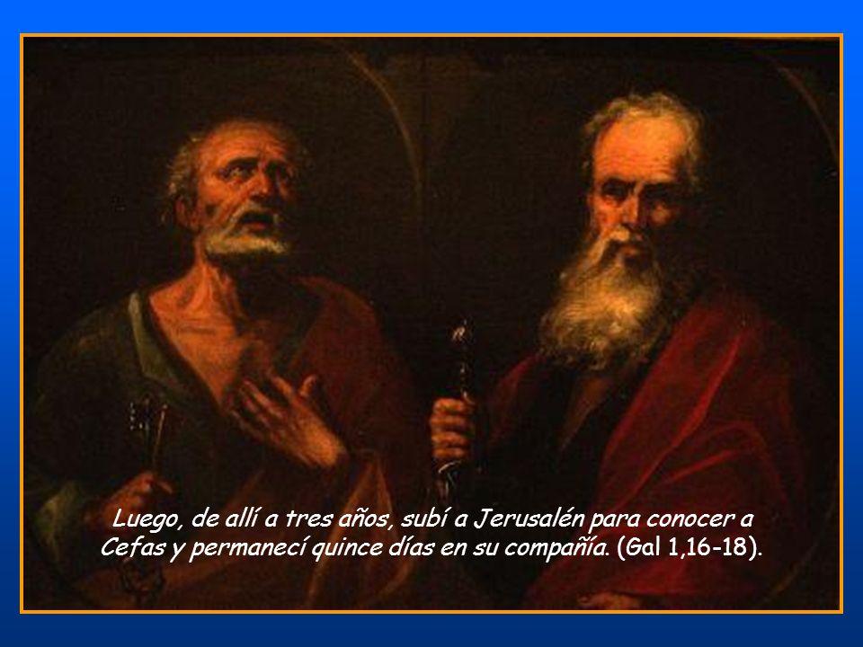 No fui desobediente a la visión celestial, (Hch 26,19) y, al punto, sin pedir consejo ni a la carne ni a la sangre, sin subir a Jerusalén donde los ap