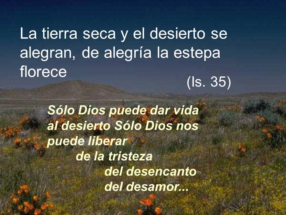 La tierra seca y el desierto se alegran, de alegría la estepa florece Sólo Dios puede dar vida al desierto Sólo Dios nos puede liberar de la tristeza del desencanto del desamor...