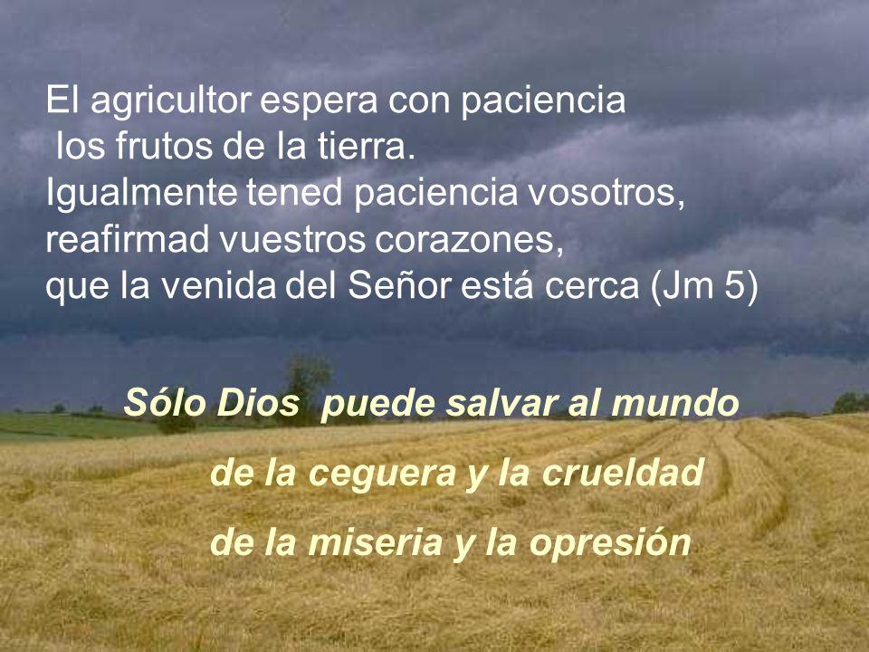 La tierra seca y el desierto se alegran, de alegría la estepa florece Sólo Dios puede dar vida al desierto Sólo Dios nos puede liberar de la tristeza