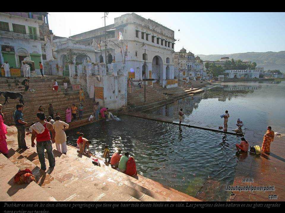 Pushkar, un oasis en el desierto del Thar. El lago sagrado de Pushkar se formó a partir de unos petalos caídos de las manos de Brahma.