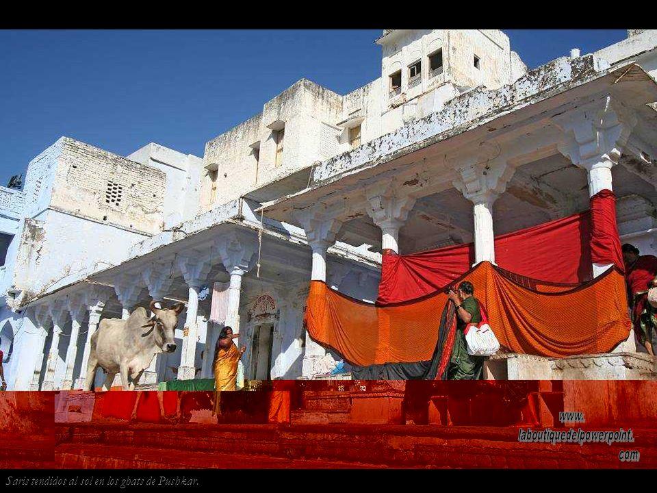 Pushkar es uno de los cinco dhams o peregrinajes que tiene que hacer todo devoto hindú en su vida. Los peregrinos deben bañarse en sus ghats sagrados