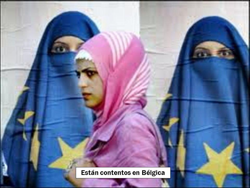 Están contentos en Holanda