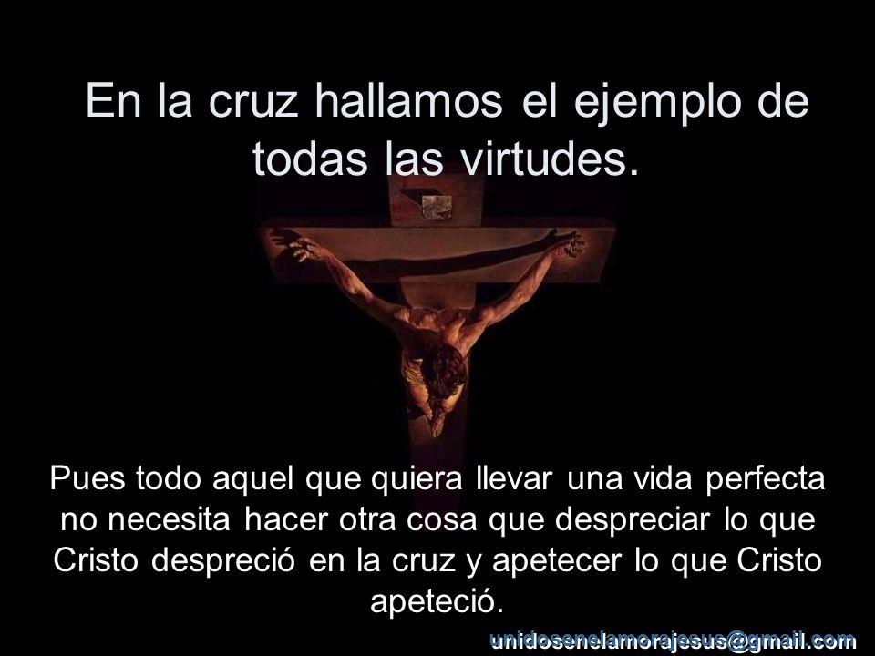 En la cruz hallamos el ejemplo de todas las virtudes.