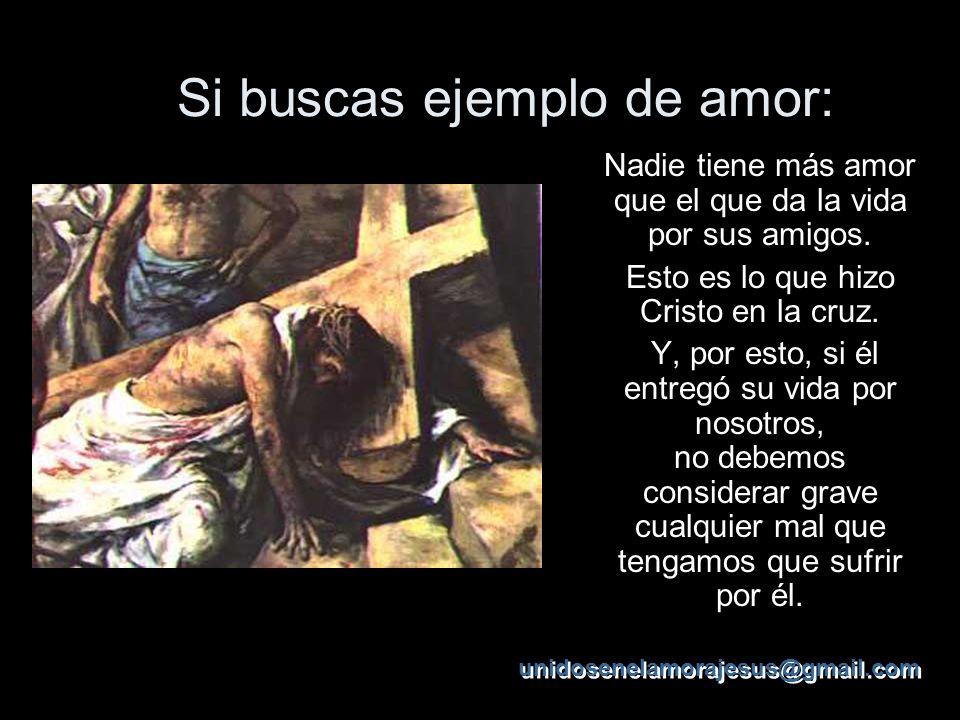 En la cruz hallamos el ejemplo de todas las virtudes. Pues todo aquel que quiera llevar una vida perfecta no necesita hacer otra cosa que despreciar l