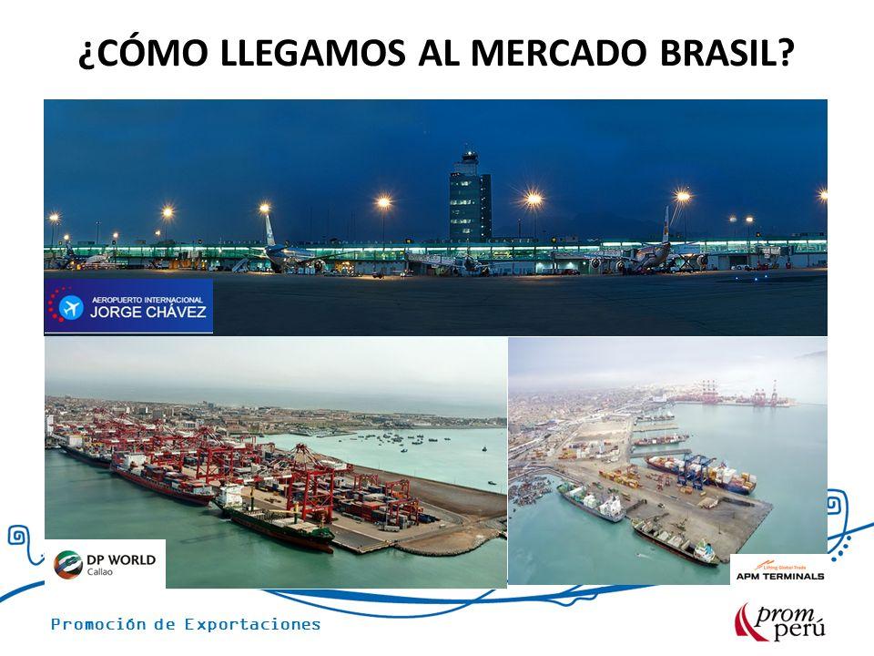 Promoción de Exportaciones ¿CÓMO LLEGAMOS AL MERCADO BRASIL?
