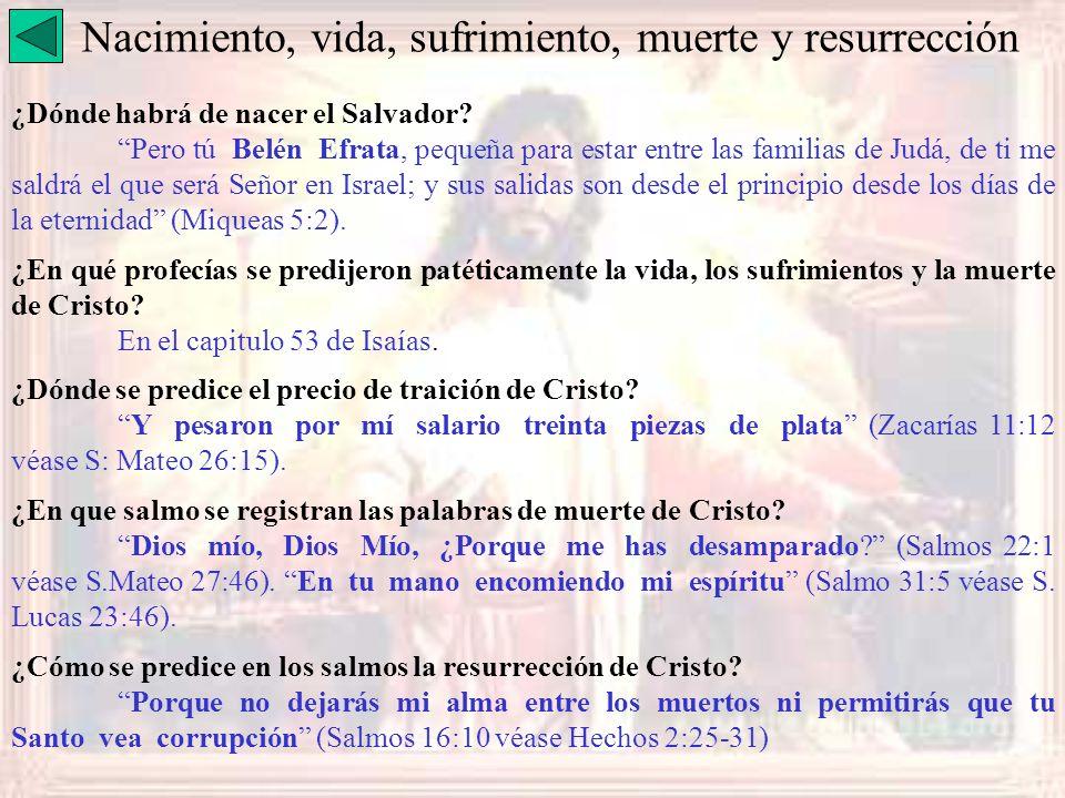 Nacimiento, vida, sufrimiento, muerte y resurrección ¿Dónde habrá de nacer el Salvador? Pero tú Belén Efrata, pequeña para estar entre las familias de