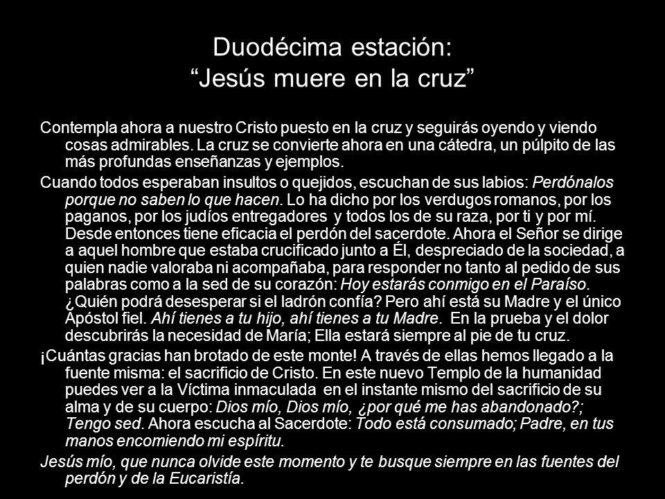 Duodécima estación: Jesús muere en la cruz Contempla ahora a nuestro Cristo puesto en la cruz y seguirás oyendo y viendo cosas admirables. La cruz se