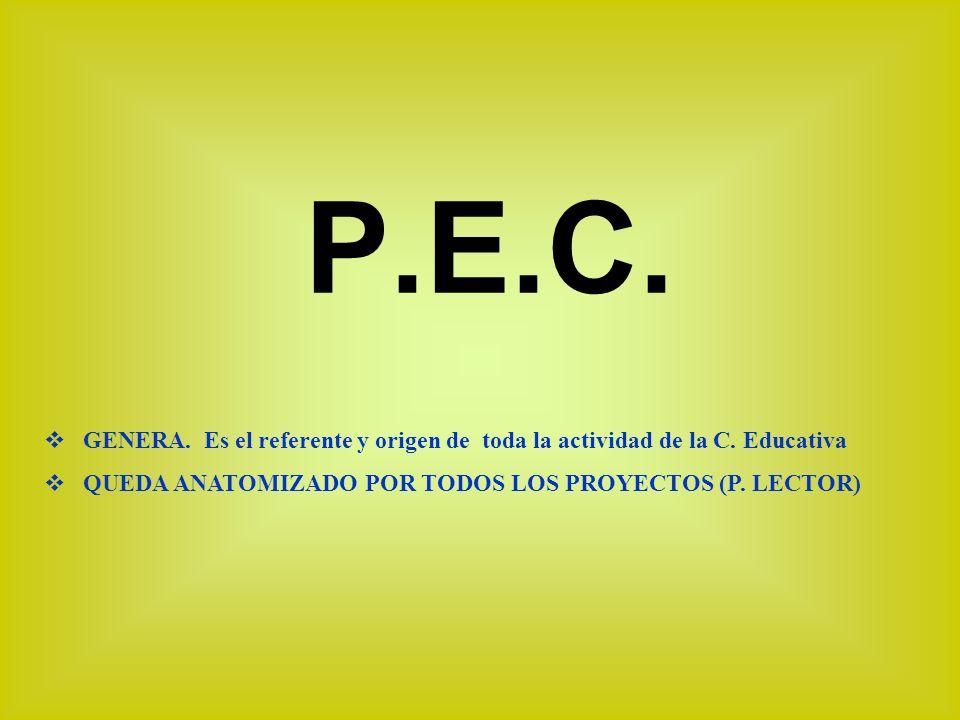 P.E.C.G ENERA. Es el referente y origen de toda la actividad de la C.