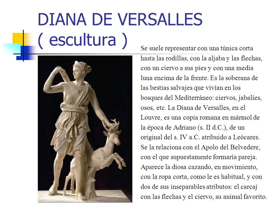 DIANA DE VERSALLES ( escultura ) Se suele representar con una túnica corta hasta las rodillas, con la aljaba y las flechas, con un ciervo a sus pies y con una media luna encima de la frente.