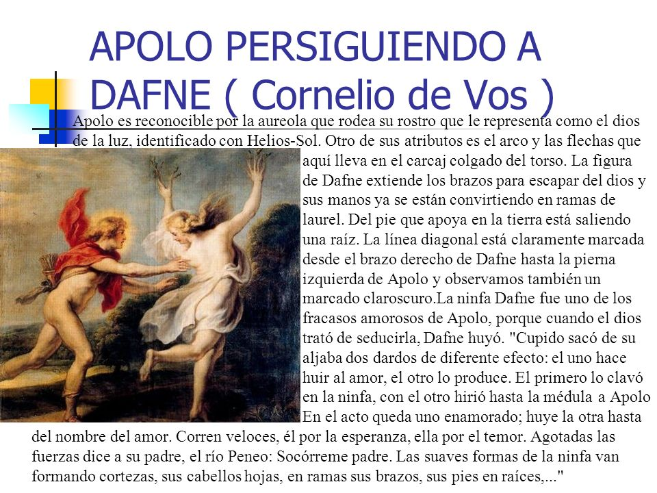 APOLO PERSIGUIENDO A DAFNE ( Cornelio de Vos ) Apolo es reconocible por la aureola que rodea su rostro que le representa como el dios de la luz, identificado con Helios-Sol.