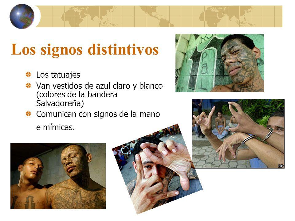 Los signos distintivos Los tatuajes Van vestidos de azul claro y blanco (colores de la bandera Salvadoreña) Comunican con signos de la mano e mímicas.