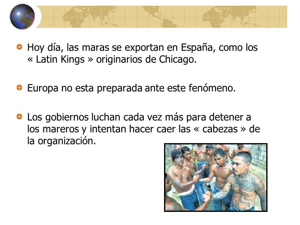 Hoy día, las maras se exportan en España, como los « Latin Kings » originarios de Chicago. Europa no esta preparada ante este fenómeno. Los gobiernos