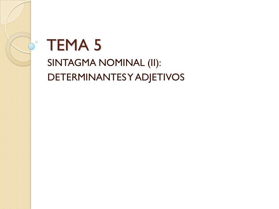 TEMA 5 SINTAGMA NOMINAL (II): DETERMINANTES Y ADJETIVOS
