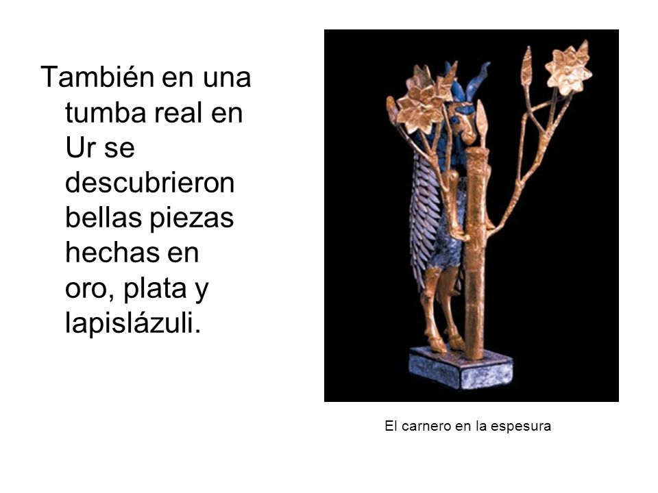 El carnero en la espesura También en una tumba real en Ur se descubrieron bellas piezas hechas en oro, plata y lapislázuli.