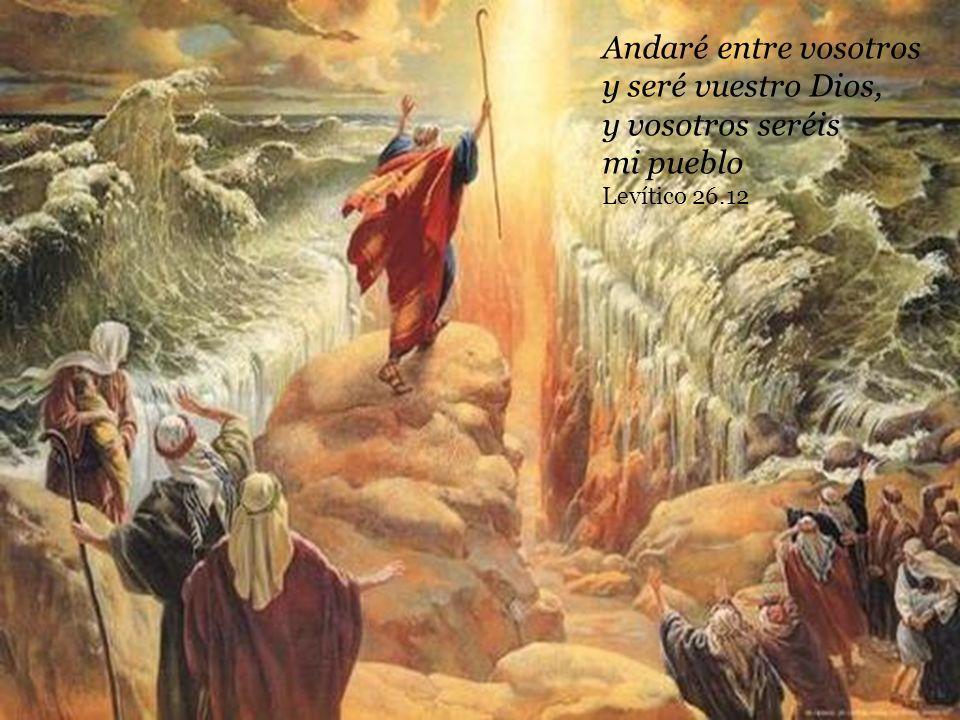 Andaré entre vosotros y seré vuestro Dios, y vosotros seréis mi pueblo Levítico 26.12