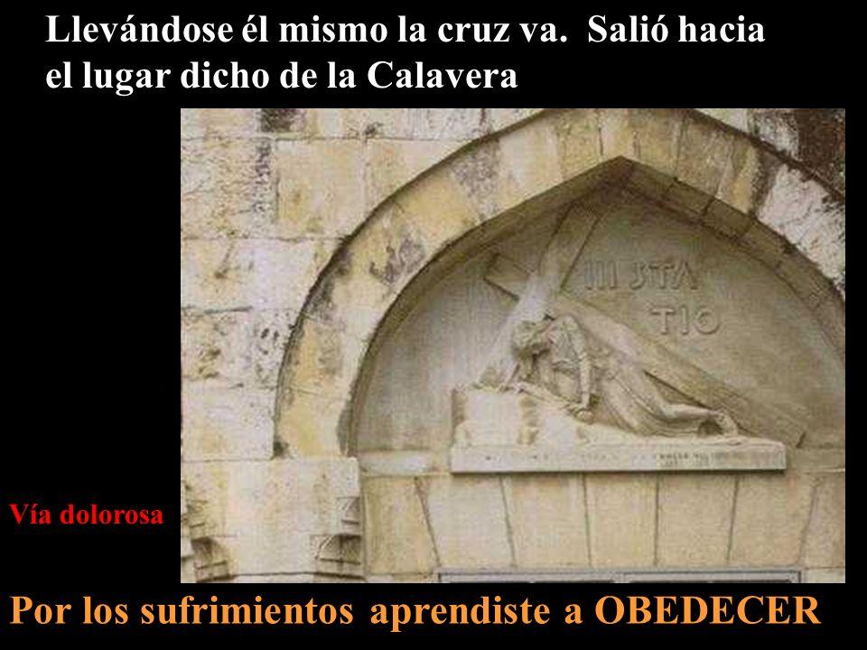 1 2 3 Getsemaní Casa de Anás Casa de Caifás 4 Pretorio de Pilato 5 Via Dolorosa