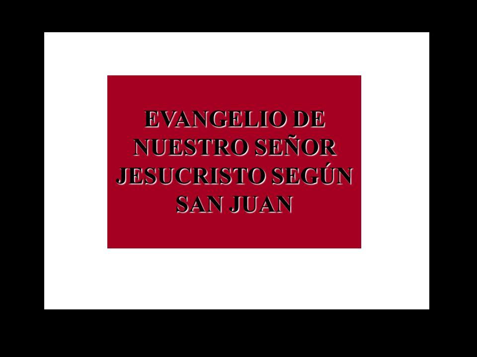 COMO USAR el Power Point en la celebración litúrgica, o en la meditación privada, mientras se lee el evangelio de S. Juan: Cada apartado (diapositiva