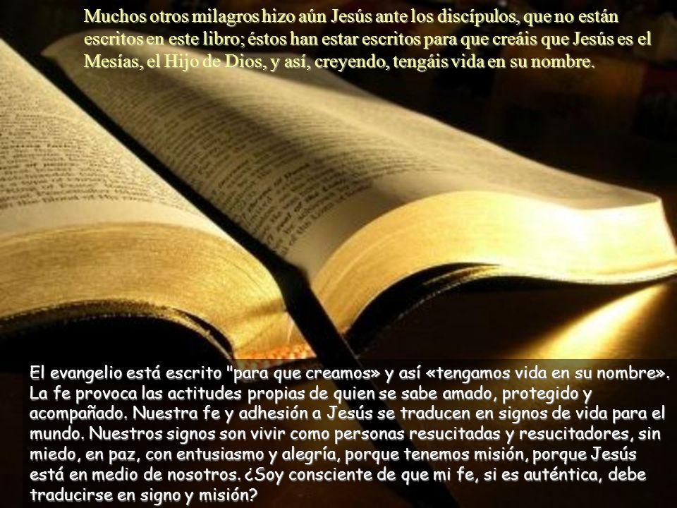 Jesús le dijo: «¿Porque me has visto has creído? Dichosos los que crean sin haber visto.» La duda de Tomás consigue de Jesús una promesa en forma de b