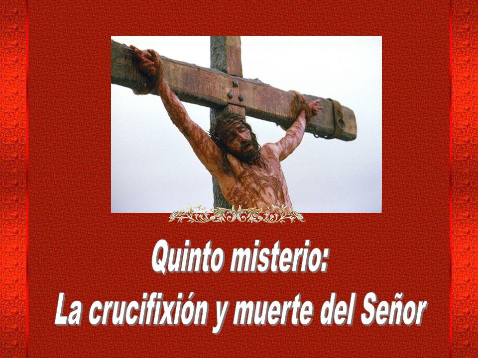 Sobrelleva la Cruz de su agonía descarnando sus pies en la andadura.