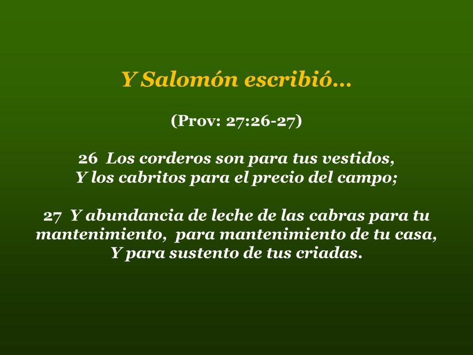 Moisés y Pablo Refiriéndose al servicio en el Señor dijeron… (Deut: 25:4) No pondrás bozal al buey cuando trilla (1Cor:9:9) (1Cor: 9:7-18) ¿Quién fue jamás soldado a sus propias expensas.