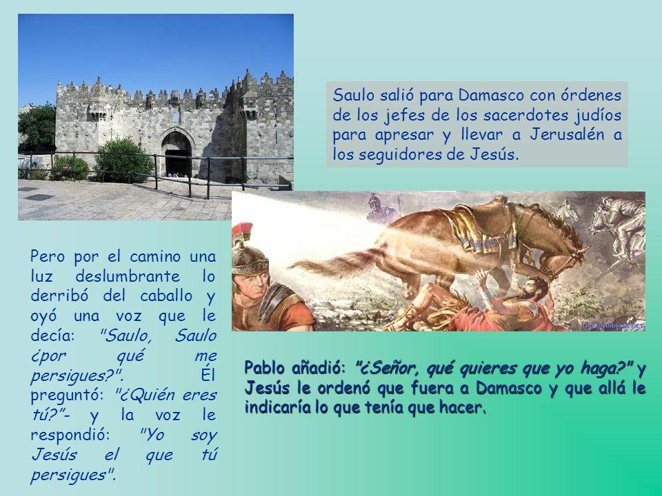Después de la muerte de Jesús, volvió Saulo a Jerusalén y se encontró con que los seguidores de Jesús se habían extendido mucho y emprendió con muchos
